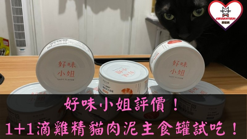 1+1滴雞精貓肉泥主食罐評價